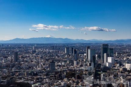 东京艺术周公布首届活动及参与阵容